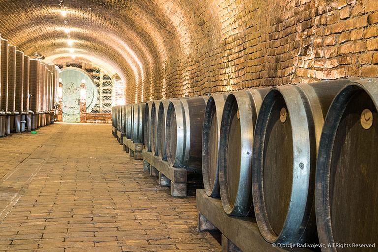 vinarija bajilo